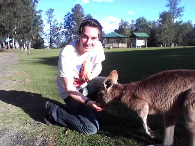 lone-pine-coala-sanctuary