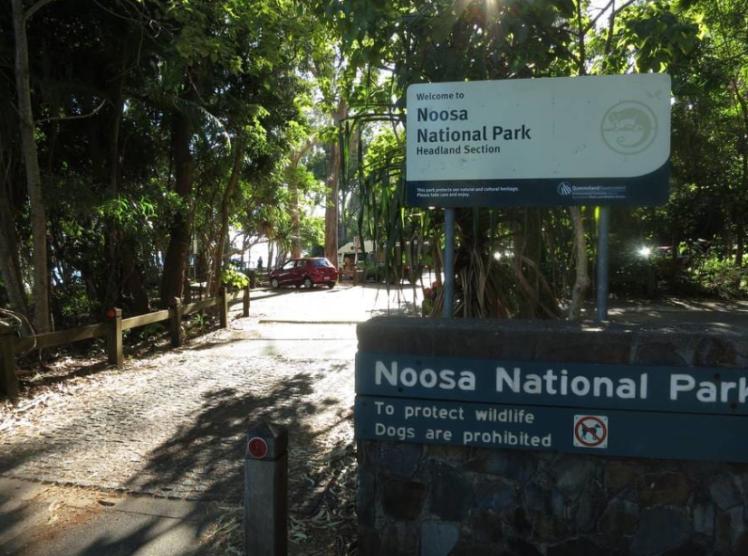 noosa-national-park