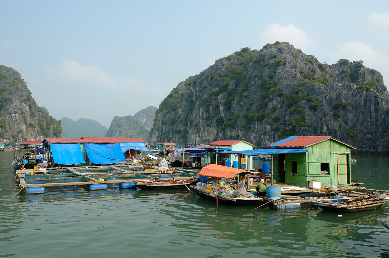 halongbay_vietnam